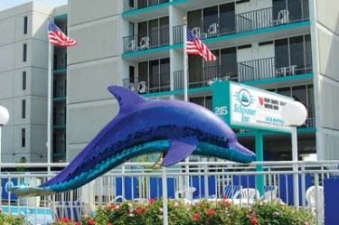 vb icon dolphin atlantic avenue